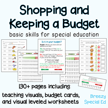 Budget Worksheets - Do you have Enough Money? Life Skill Math for Special Ed