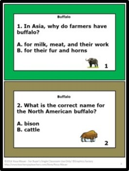 Buffalo Nature's Children Task Cards