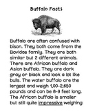 Buffalo Before Breakfast Magic Treehouse Unit