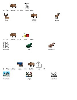 Buffalo - Picture Supported Text - Review Facts Questions with choice set