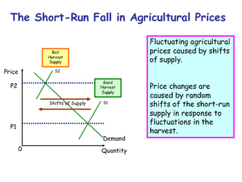 Buffer Stocks - Government Price Controls - PPT & Worksheet