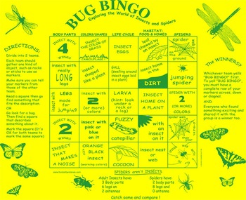 Bug Bingo Game! A fun science Activity for 4-5th graders