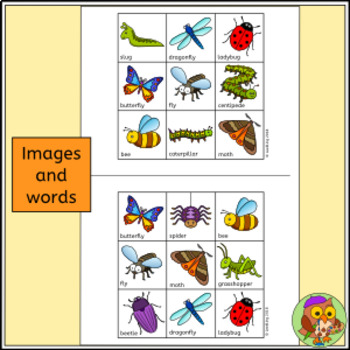 Bug Bingo - Insect and Minibeast Bingo