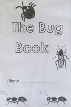 Bug Book: Addition Story Problems