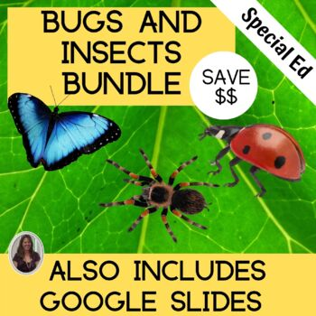 Bug Bundle Including Insects, Butterflies and Spiders for Special Education