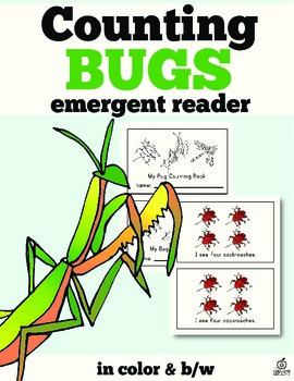 Insect Emergent Reader: Insect Counting with One-to-One Correspondence