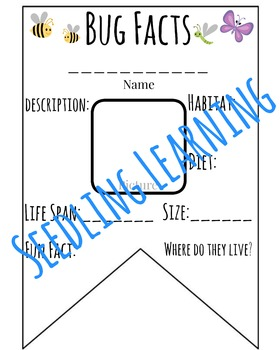 Bug Facts Banner / Pennant