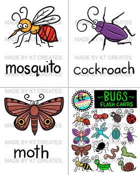 Bug Flash Cards - Color & BW - No Prep & Ready to Print {KT Creates}
