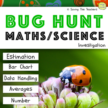Bug Hunt Maths and Science Investigation