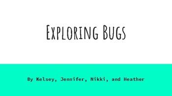 Bug Lesson Plan