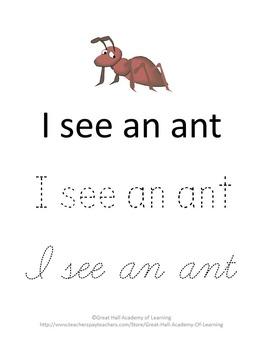 Bug Lesson Plans