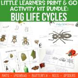 Bug Life Cycle Worksheets Bundle