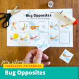Bug & Insect Opposites & Matching Activity Math Worksheet,