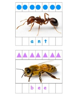 Bug Popsicle Stick Puzzle