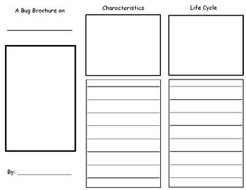 Bug Research Tri-Fold Brochure