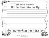 Bug Sentence Order Practice