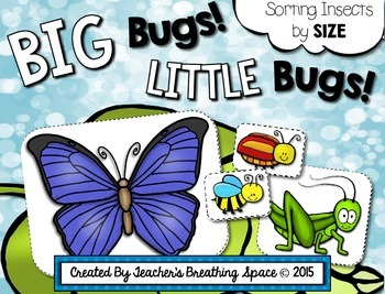 Bug Sorting --- Insect Sorting By Size --- Spring Sorting