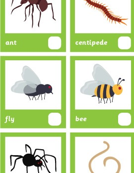 Bug Spotter Sheet