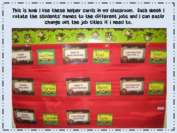 Bug Themed Classroom Job Cards