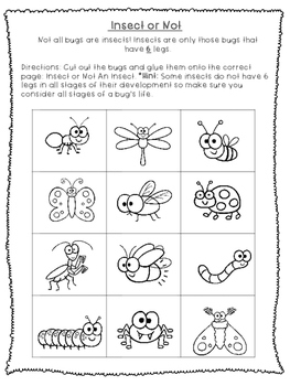 Insect & Bug Themed Language Arts Worksheets- Vocabulary, Grammar & Writing