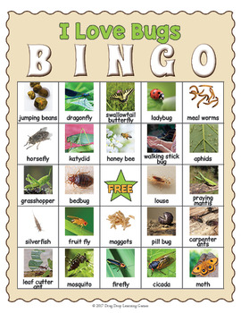 Bugs and Insects Bingo Game