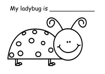 Bug colour recognition book
