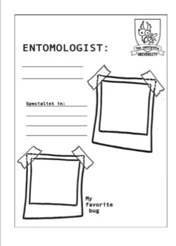 Bugs exploration journal