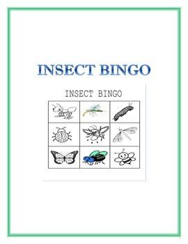 Bug Bingo or Match game