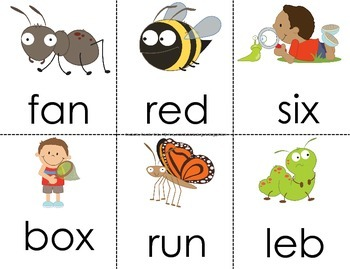 Bug/Insect Theme 'Read the Room' for CVC and Nonsense Words!