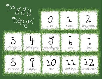 Buggy Bingo 1