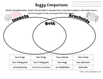 Buggy Comparisons