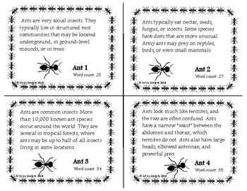Buggy Fluency Practice