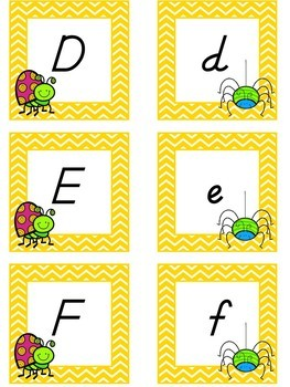 Buggy Themed D'Nealian Uppercase and Lowercase Alphabet and Number Cards