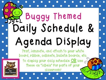 Buggy Themed Schedule Cards Labels & Daily Agenda Reminders Classroom Display