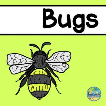 Vocabulary Word Cards--Bugs