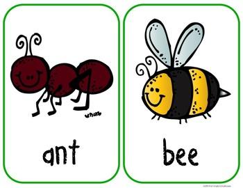 Writing About Bugs Kindergarten