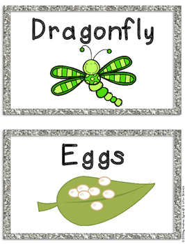 Bug Unit, Bug Packet, Bug Science, Spider Investigations, Insect Investigations