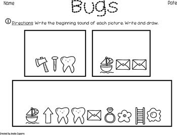 Insects- Vocabulary Pack
