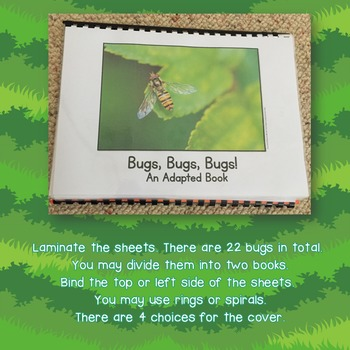 Bugs Adapted Book