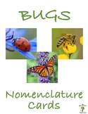 Bugs 3 Part Nomenclature Cards with Real Pictures