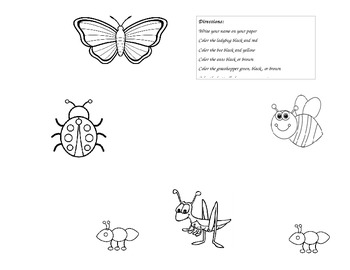 Bugs: A Following Directions Activity