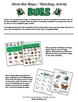 Bugs Bingo / Matching Activities