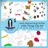 Bugs, Birds, Bees, Insects Clip Art Bundle