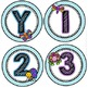Bugs, Bugs, Bugs! Birthday Bulletin Board Pack *Blue Crisscross Background*