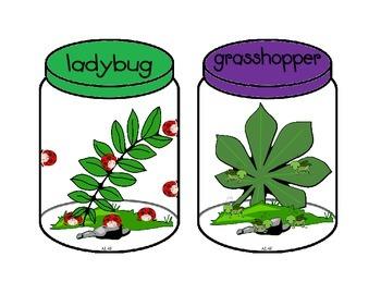 Bugs Bugs in a Jar