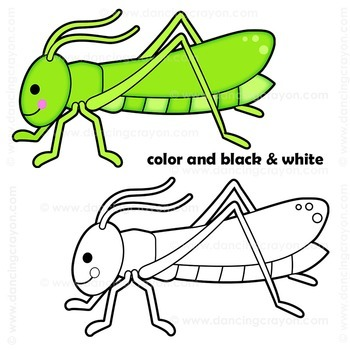 Bugs Clip Art / Insects