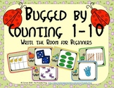 Bugs Counting 1-10 (Write the Room for Beginners)