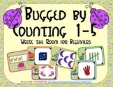 Bugs Counting 1-5 (Write the Room for Beginners)