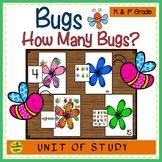 Bugs Counting Games: How Many Bugs?