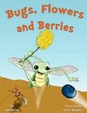 Bugs, Flowers and Berries- Teacher Resource